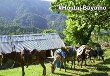 Hostal Bayamo